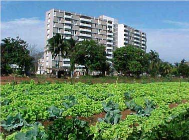 Las dos nuevas provincias cubanas Artemisa y Mayabeque